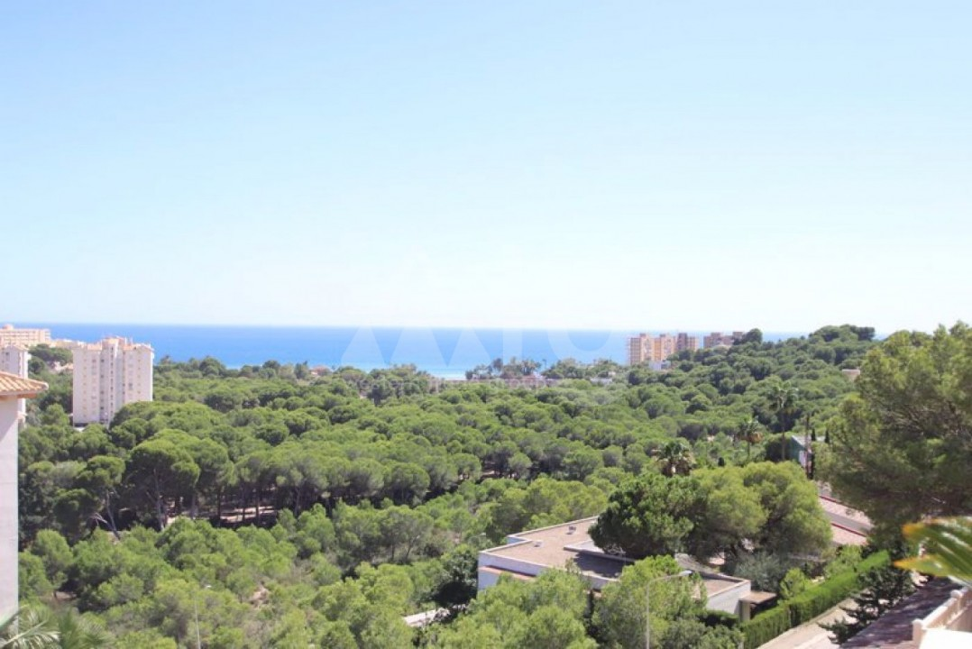 3 bedroom Penthouse in Dehesa de Campoamor  - CRR87141132344 - 28