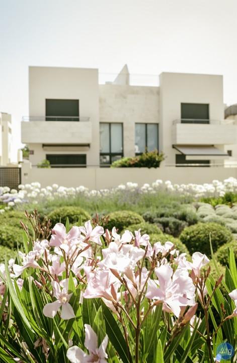 3 bedroom Apartment in Los Dolses - MN6803 - 44