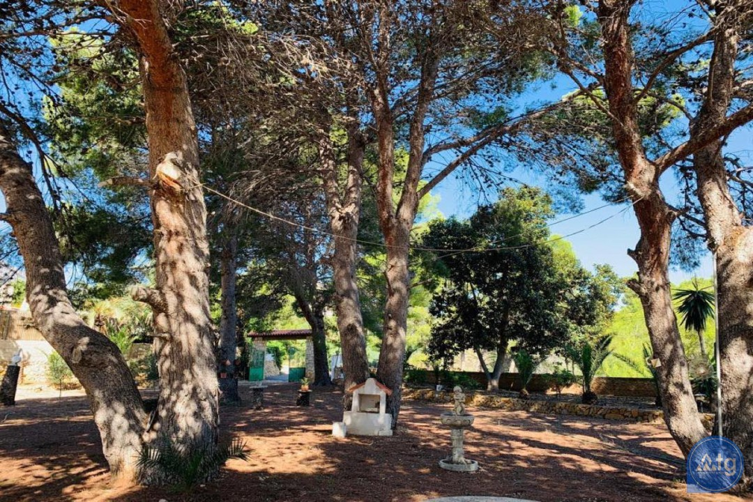 2 bedroom Apartment in Pilar de la Horadada  - OK114194 - 14
