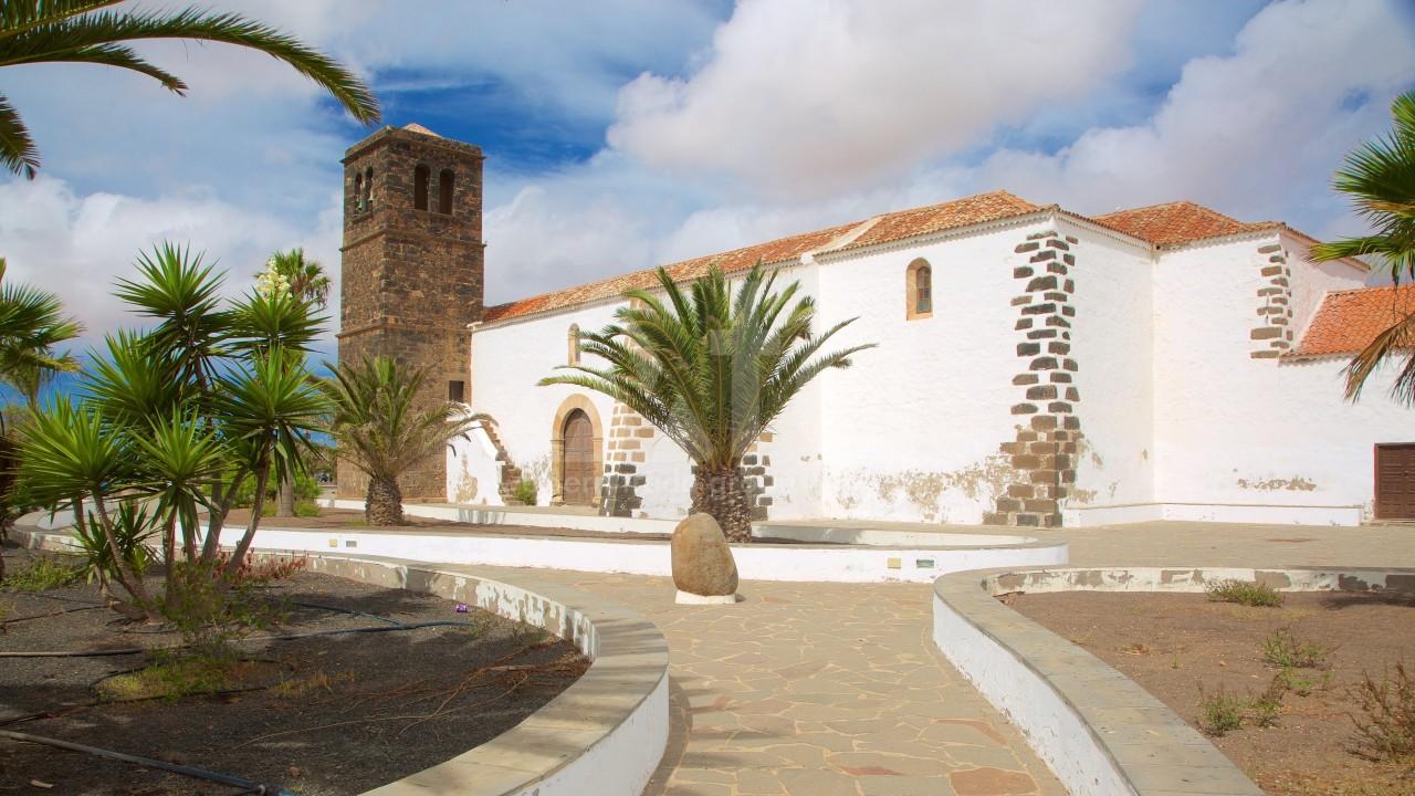 2 bedroom Apartment in Playa Flamenca  - TM117550 - 3