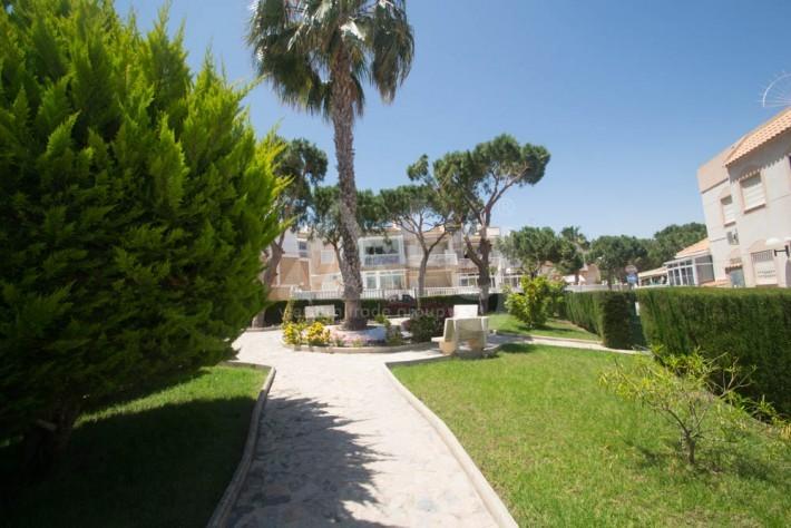 2 bedroom Apartment in Torrevieja - AGI8536 - 2