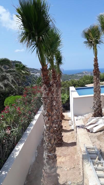 3 bedroom Apartment in La Zenia - US6846 - 4