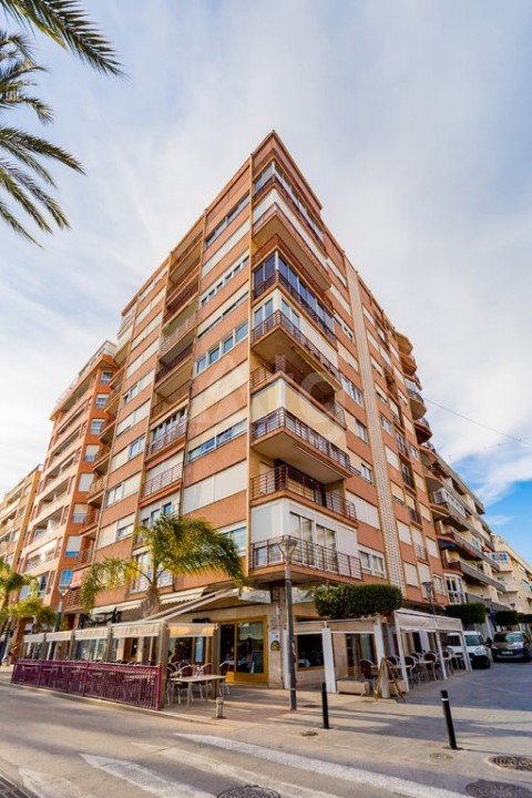 3 bedroom Apartment in Torrevieja  - AG4295 - 13