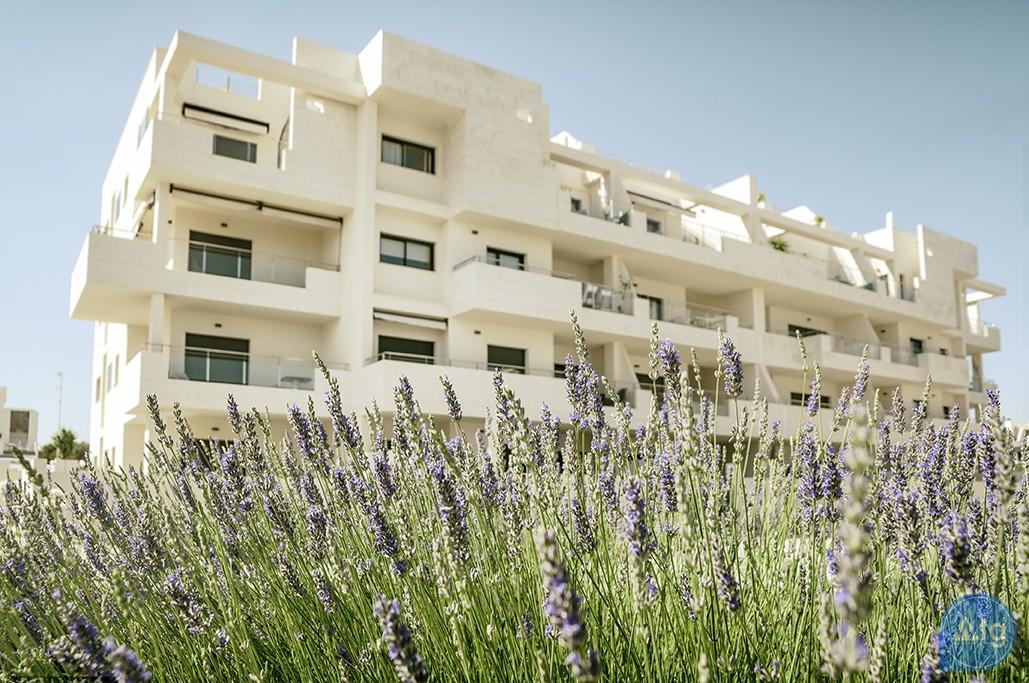 3 bedroom Apartment in Los Dolses  - MN116145 - 11