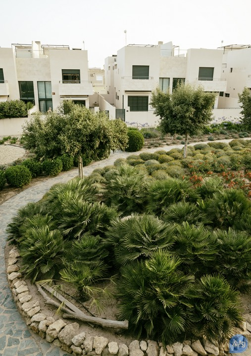 3 bedroom Apartment in Los Dolses  - MN116145 - 49