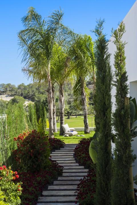 2 bedroom Duplex in Los Altos - CP6355 - 13