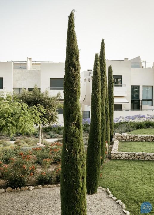 3 bedroom Apartment in Los Dolses  - MN6801 - 46
