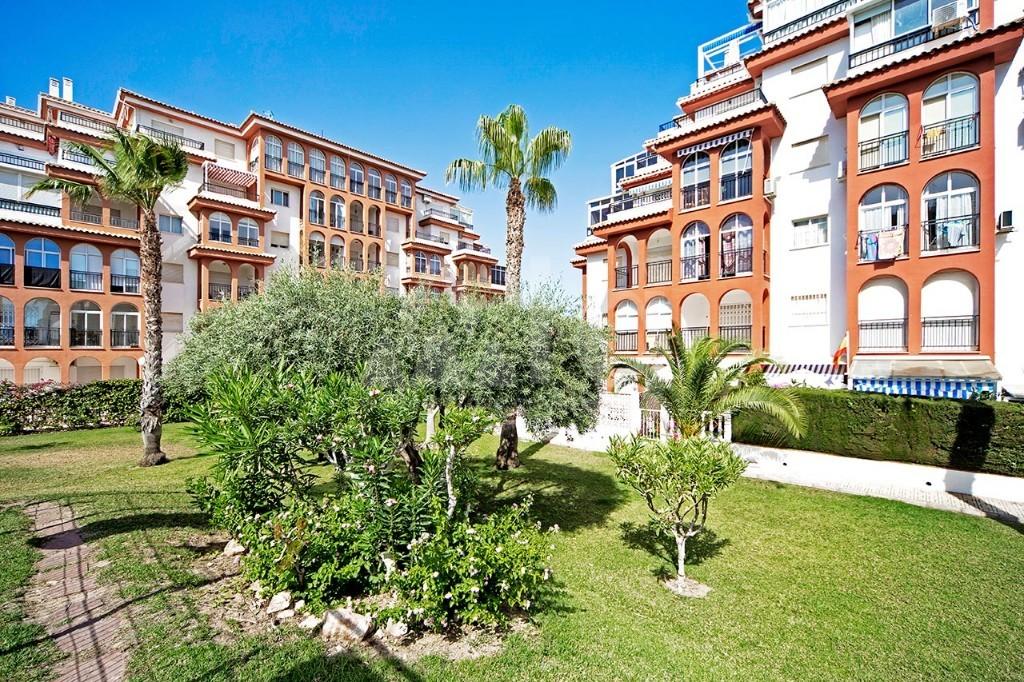 2 bedroom Bungalow in Guardamar del Segura - CN7817 - 15