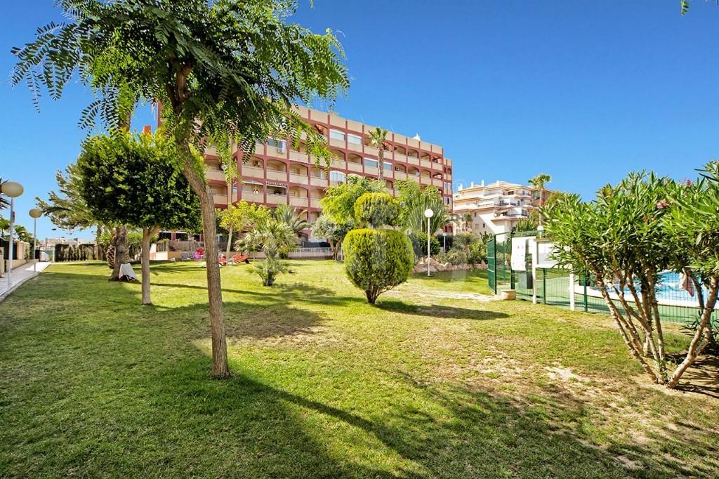 2 bedroom Bungalow in Guardamar del Segura - CN7817 - 17