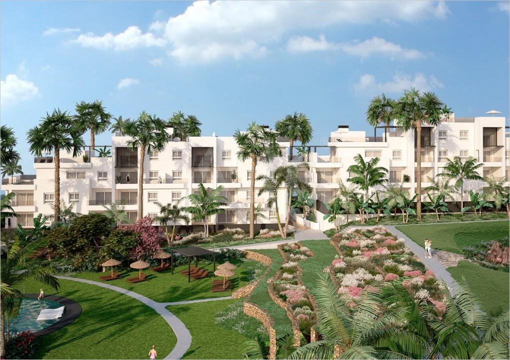 3 bedroom Penthouse in Villamartin - NS8294 - 13