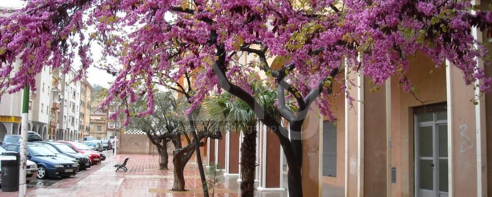 5 bedroom Villa in Villamartin - MD6398 - 7