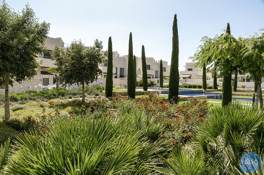 2 bedroom Apartment in Los Dolses - MN6800 - 36