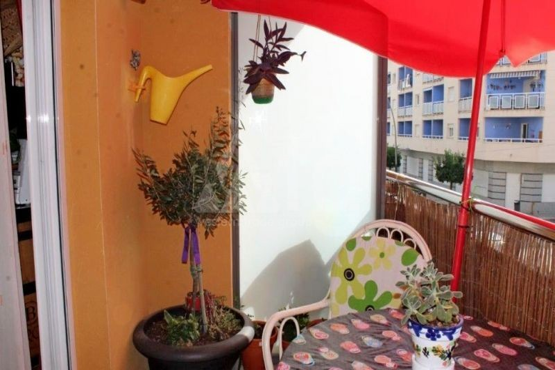 3 bedroom Villa in Algorfa  - TRI114879 - 6