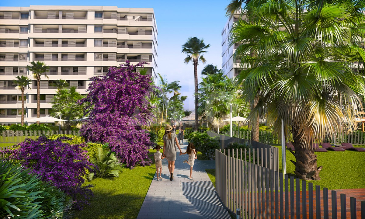 2 bedroom Apartment in Torrevieja - GD3971 - 16