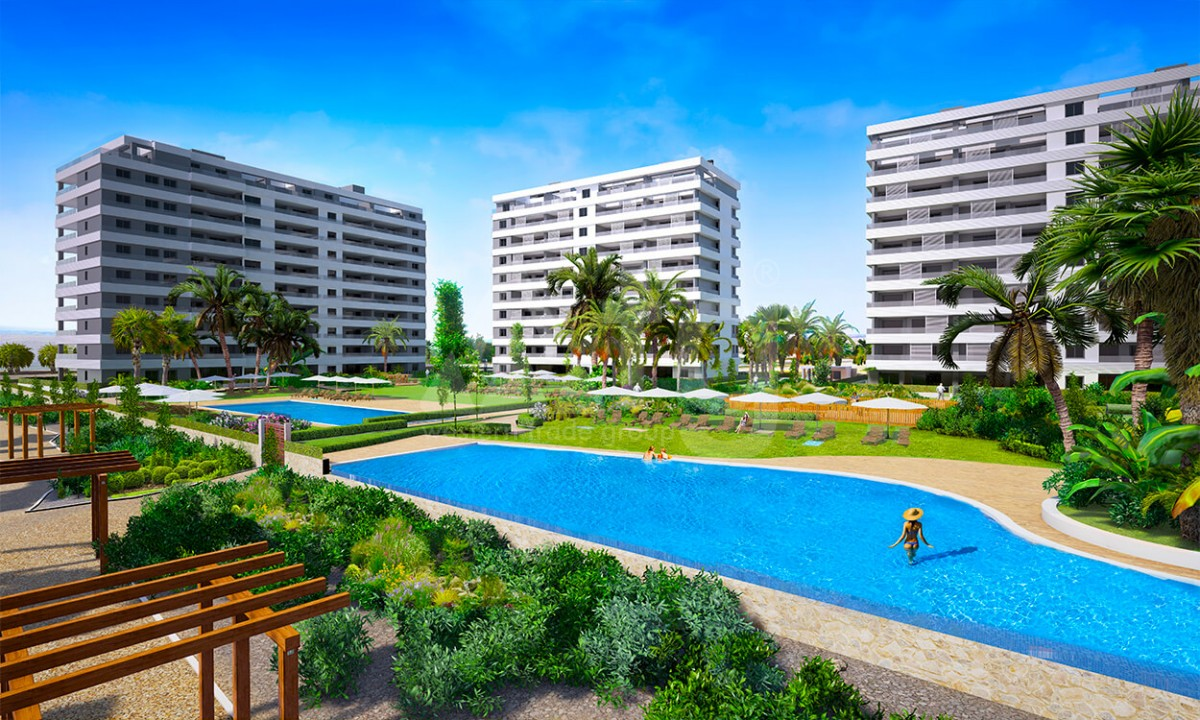 2 bedroom Apartment in Torrevieja - GD3971 - 25