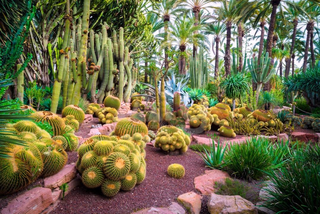 2 Schlafzimmer Appartement in Villajoyosa  - VLH118547 - 10