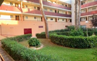 2 bedroom Apartment in Mil Palmeras  - TT101274