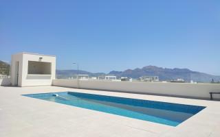 2 bedroom Apartment in Punta Prima  - CBH7145