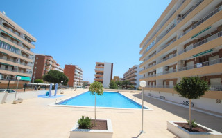 2 bedroom Apartment in Punta Prima  - CRR66648712344