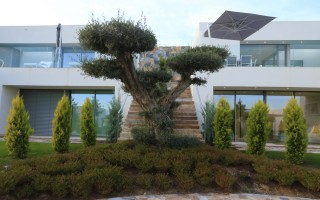 3 bedroom Villa in Las Colinas  - LCG1117674