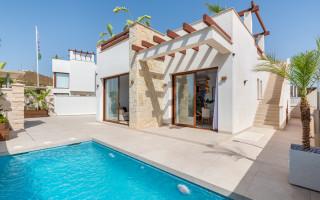 Bungalow de 2 chambres à Algorfa - PT116049