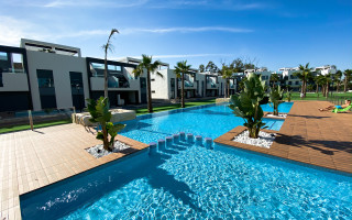 2 bedroom Apartment in Guardamar del Segura - ER7059
