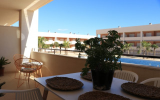 2 bedroom Apartment in San Miguel de Salinas - IR8440