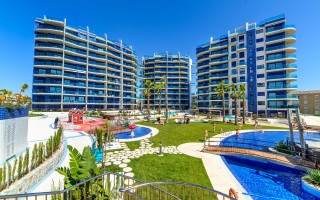 2 bedroom Apartment in Torrevieja - AGI115591