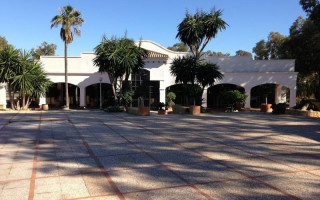 Commercial property in La Zenia - CRR15738772344
