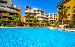 3 bedroom Apartment in Punta Prima - GD3968
