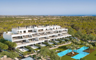 Neue Elite Wohnung nicht weit vom Meer  in Torre de la Horadada, Costa Blanca - CC7382