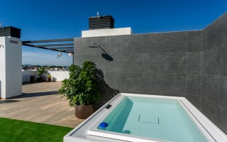 Penthouse de 3 chambres à Punta Prima - TRI117466