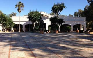 Spaţiu comercial cu 15 dormitoare în La Zenia  - CRR15738772344