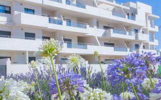2 bedroom Apartment in Los Dolses - MN6810