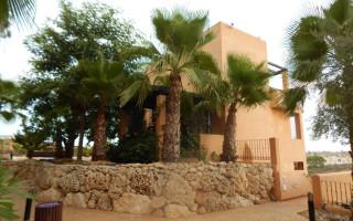 2 bedroom Apartment in Guardamar del Segura - ER2811